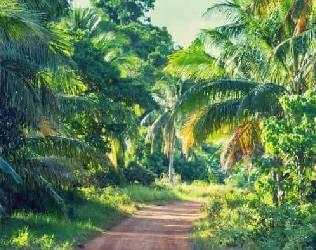 Visa Gabon